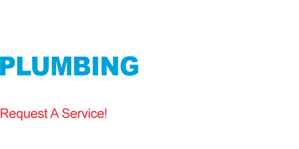 Professional Plumbers in Dallas TX